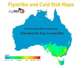 Predict your flystrike and extreme weather risk with the National Flystrike and Cold Risk Maps from across Australia Ag360™