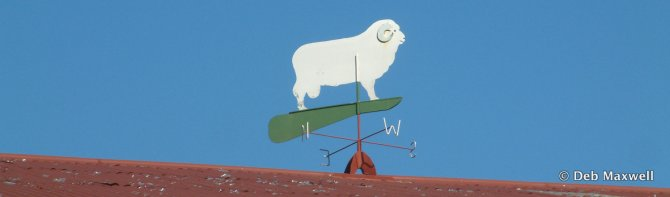 "The weathervane atop the shearing shed at ""Gostwyk"", Uralla, NSW."