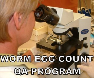 Are your worm egg counting results up to scratch?