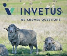 Invetus is a merger between Veterinary Health Research and VetX