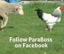 Click the image to go to ParaBoss on Facebook