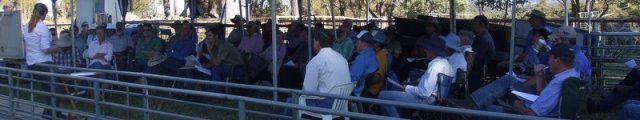 Big turnout at the WormBoss Producer Demonstration Site first workshop, near Guyra in February