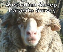What are your needs for better parasite management services? Please do the survey!