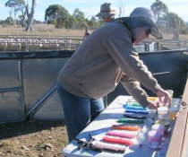 Drench Testing by other project cooperators, Elizabeth Jackson and Mitchell Hope